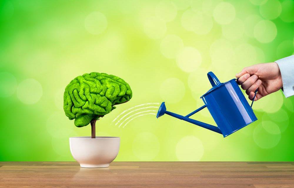 Conseils rapides : Comment améliorer votre mémoire